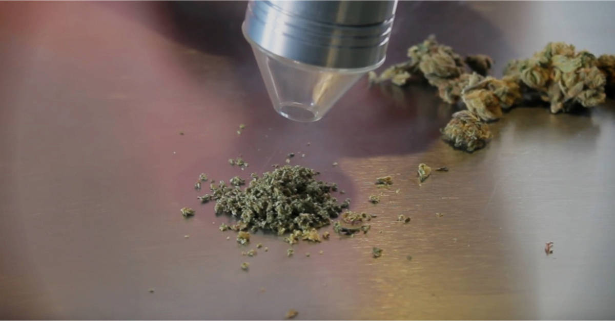 We Review The Best Electric Weed Grinder – Which Motorized Grinders For Marijuana (Pot) Should You Use?